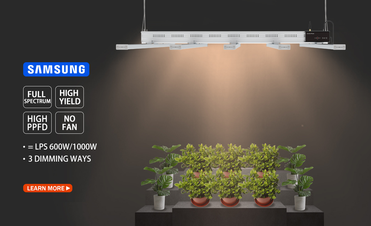 Grow light one.jpg