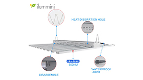 ilummini 800w LED Grow Light